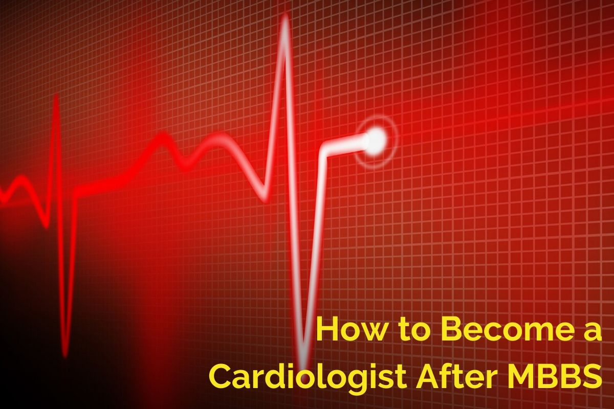 cardiologist after MBBS